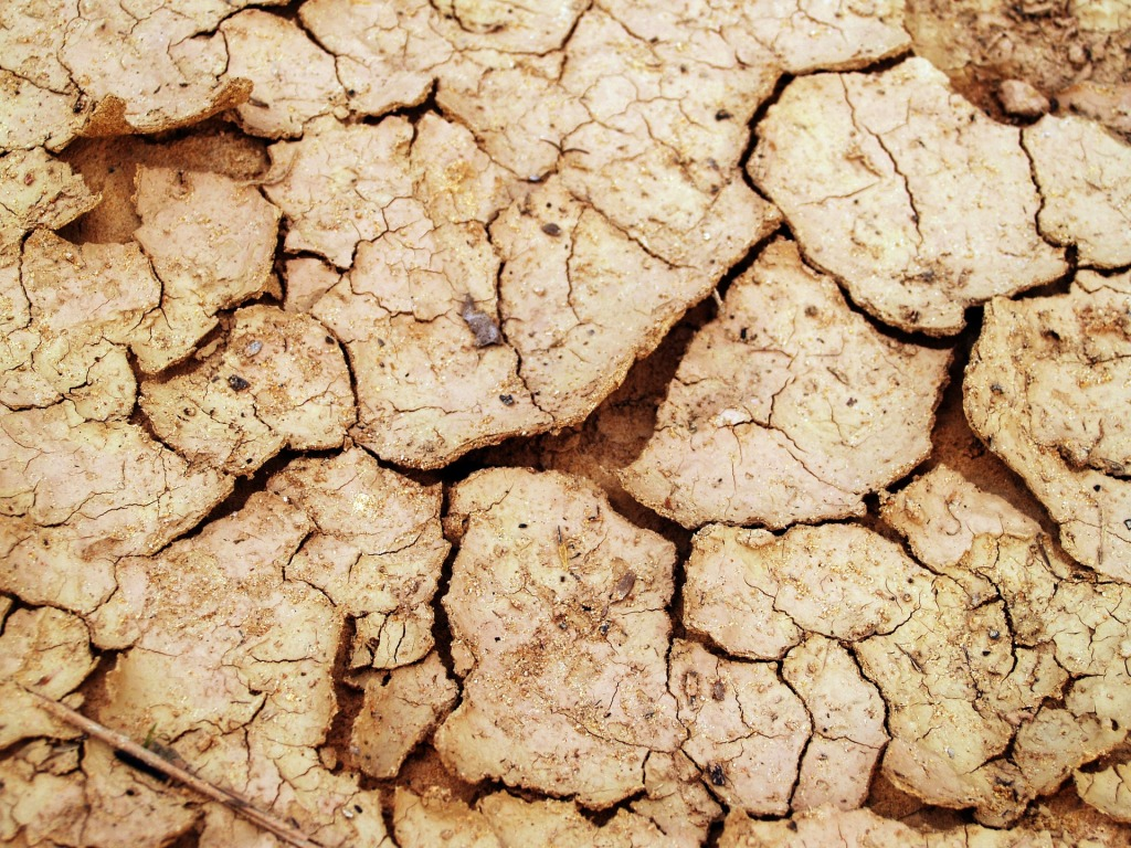 乾燥症的口腔,長期乾燥像是缺水很久的土地