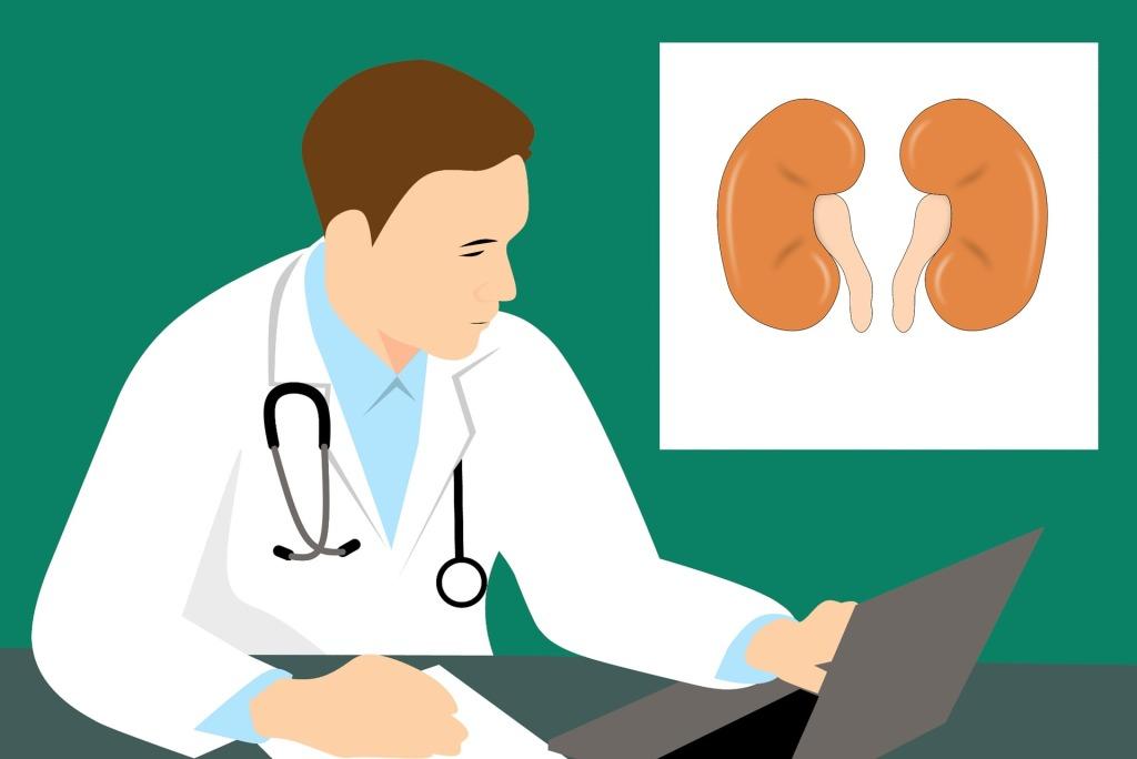 腎臟切片檢查可以提供狼瘡腎炎的嚴重程度、急性程度與幫助醫師使用最佳治療策略。
